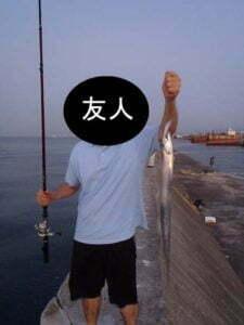 武庫川一文字ソウダガツオ
