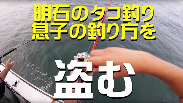 明石のタコ釣り比較