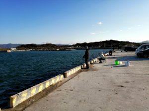 日高港の釣り