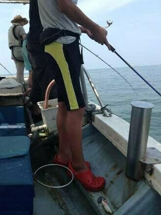 明石のタコ釣り