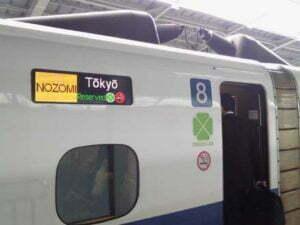 神戸港のスルメイカ