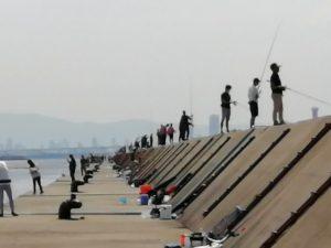 2020武庫川一文字タコ釣り